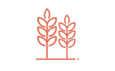 A partir de février 2020 – Rencontres des agriculteurs